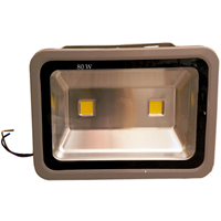 供应成都LED投光灯生产厂家