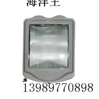 供应广照型灯海洋王NSC9700 防眩通路灯