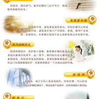 溧阳市隐形纱窗,隐形防护网,金刚网纱窗招商