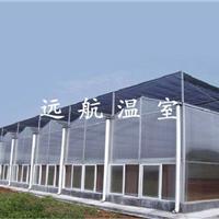 供应 PC阳光板温室大棚