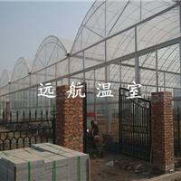 供应 连栋薄膜温室大棚