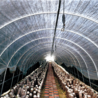 天津热镀锌带大棚钢管厂