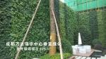 成都青青草绿化工程有限公司