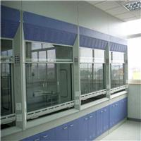 实验室防腐排风通风柜,排毒安全通风橱