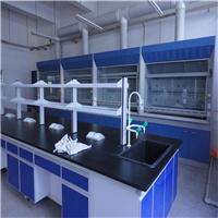 厂家直销全钢通风柜,通风橱,实验室设备