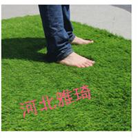 人造草坪  塑料假草坪幼儿园人工草皮20mm