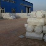 河北利泰六角护坡塑料模具厂