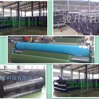 厂家排水板供应 土工格栅 土工格室