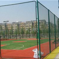 甘肃运动场菱形防护网学校操场绿色围栏网