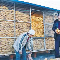 黑龙江储存粮食用什么样的铁丝网合适