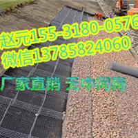 2016六角网边坡绿化六角网生态聚酯膜