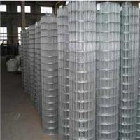 供西宁电焊网和青海浸塑电焊网特点