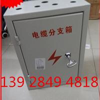 供应 矿物质电缆分支箱 BTTZ分支盒