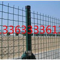 中禹厂家批发绿色方孔铁丝网售后有保障