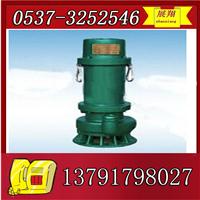 供应BQS防爆潜水泵,BQS隔爆用潜水泵