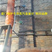 精川锅炉蒸汽流量计,主要看气质