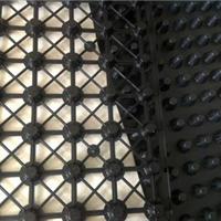 低价促销各种塑料排水板模具厂家