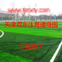 供应天津人造草坪,足球场人造草皮施工价格