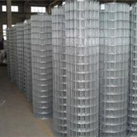 供应各种类型的电焊网可加工定做全国销售
