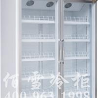 供应两门标准款展示柜展示柜报价