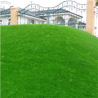 供应模仿人造草坪 草皮幼儿园专项使用地毯