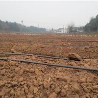 贵州滴灌管/贵州喷灌/贵州节水灌溉