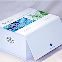 人Rho GDP解离抑制因子1检测试剂盒