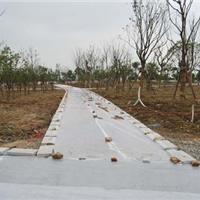 5厘米透水地坪|上海竹固透水路面