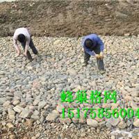 辽源生态堤蜂巢格网,吉安河道疏浚蜂巢格网