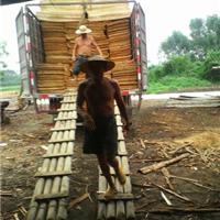 供应广西玉林1270-630-3.0mm桉木单板