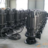 WQ,潜污泵已认证,200WQ30055