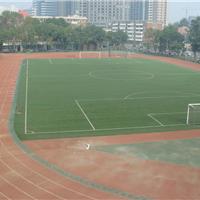 供应足球草坪