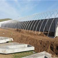 农业园标准化大棚安装速度快价格低质量好