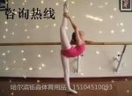 哈尔滨市铄淼体育器材有限公司