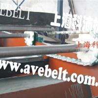 供应刮泥机塑料链条厂家