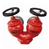 供应SNSS65室内消火栓
