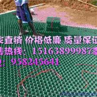 安庆植草格厂家生产