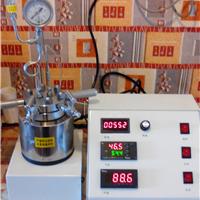 供应500ml高压程控磁力搅拌微型釜 厂家直销