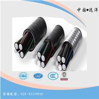 三原县黑皮电缆,国标电缆,黑皮电缆厂家