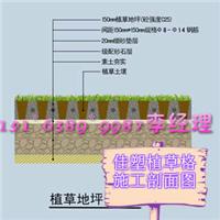 滁州植草格厂家生产