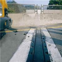 【业界良心产品众友SF梳型钢板桥梁伸缩�Q】
