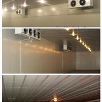 duang签订利民食品厂食品冷库安装设计完工