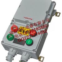 供应【BQD53系列防爆电磁起动器(IIB】