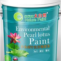 中国油漆十大品牌 中国驰名商标大自然漆