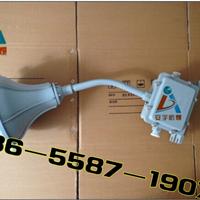 供应防水防尘防腐吸顶灯FAD-L-L100B1Z