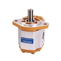 供应合肥长源液压CBQ-5长源液压齿轮泵
