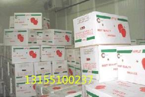 供应水果冷库工程设计安装