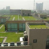 LH206-种植屋面用耐根穿刺防水卷材