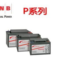 供应美国GNB蓄电池P系列