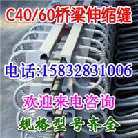 供应江苏兴化GQF-RG/C40伸缩缝厂家最新价格